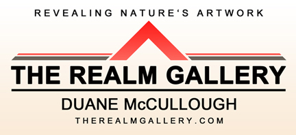 The Realm Gallery logo